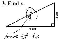 Blonde's Answer on Geometry Test
