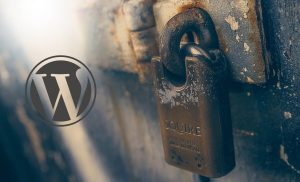 Secure your WordPress Website with Seven Solutions.